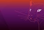 9+ Best Linux Screen Recorder On Ubuntu 20.04 LTS