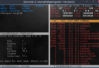 Linux GNU Screen